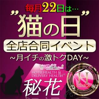 秘花日本橋 告知:ミナミエリア合同『猫の日』